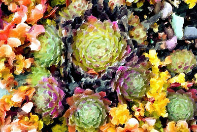 Hens And Chicks Painting - Succulents No2 by Bonnie Bruno