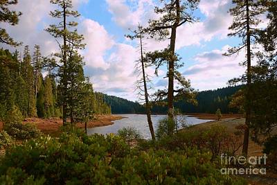 Sugar Pine Lake Trail Print by Patrick Witz
