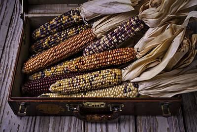 Suitcase Full Of Indian Corn Print by Garry Gay