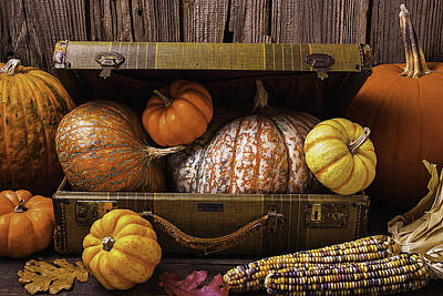 Abundance Photograph - Suitcase Full Of Pumpkins by Garry Gay