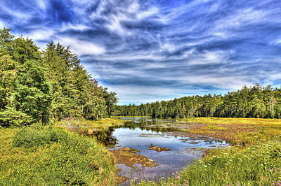 Autumn Landscape Photograph - Summer At Fly Pond by David Patterson