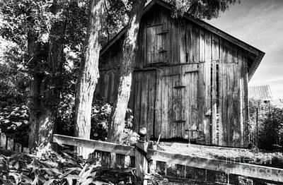Summer Country Barn Bw Print by Mel Steinhauer