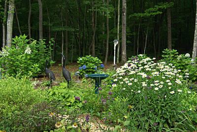 Homesickness Photograph - Summer Garden by Douglas Barnett