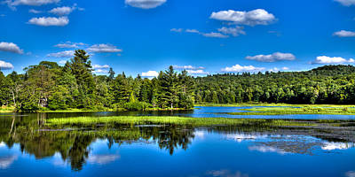 New York Photograph - Summer Greens On The Moose River by David Patterson