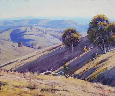 Summer Hillside, Mudgee Original by Graham Gercken