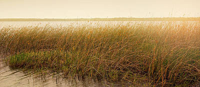 Gulf Front Pool Photograph - Summer On The Marsh by Sally Simon