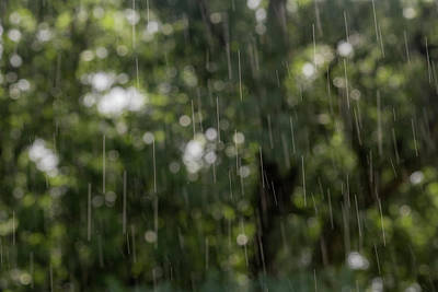 Photograph - Summer Rain Abstract  by Terry DeLuco