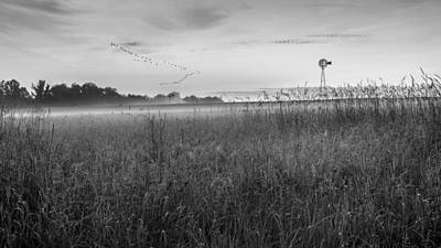 Geese Photograph - Summer Sunrise 2015 Bw by Bill Wakeley