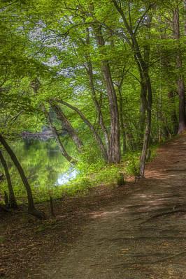 New Hampshire Photograph - Summer Walk by Joann Vitali