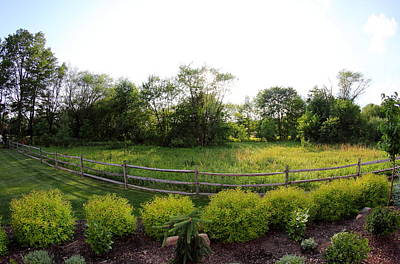Fence Photograph - Summer Yard by Brian Manfra