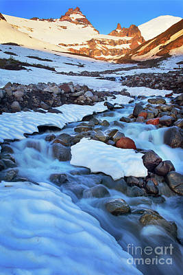 Mt Rainier National Park Photograph - Summerland Creek by Inge Johnsson