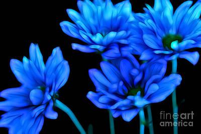 Blue Flowers Photograph - Summertime Blues by Krissy Katsimbras