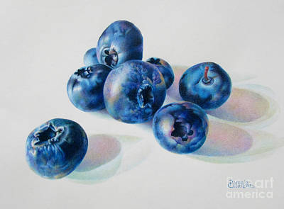 Blueberry Drawing - Summertime Blues by Pamela Clements