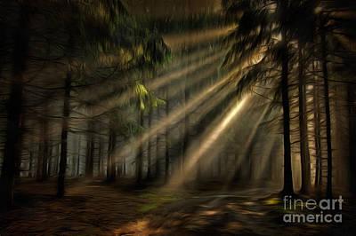 Sun Rays Digital Art - Sun Rays In The Forest by Michal Boubin