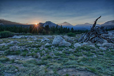 High Sierra Photograph - Sunburst In Tuolumne by Bill Roberts