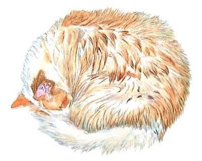 Sundance Painting - Sundance The Cat by Yvonne Carter