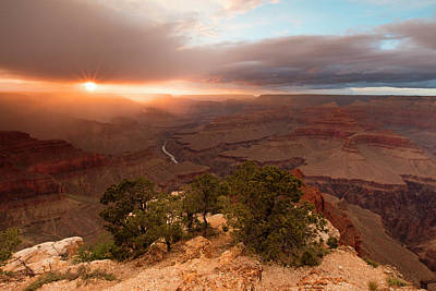 Sundown On The South Rim Print by Mike Buchheit