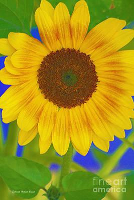 Sunflower Art Print by Deborah Benoit