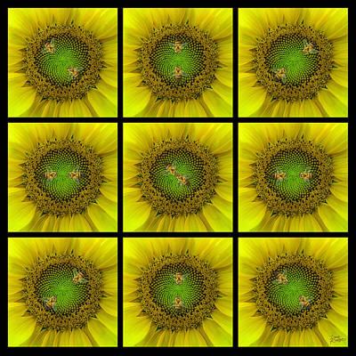 Sunflower Dance Ill Print by Doug Kreuger