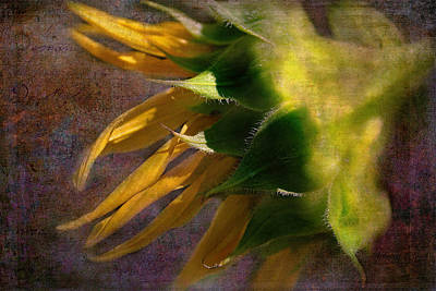 The View Mixed Media - Sunflower On The Side by Bellesouth Studio