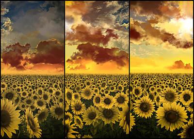 Digital Sunflower Digital Art - Sunflowers Triptych by Bekim Art