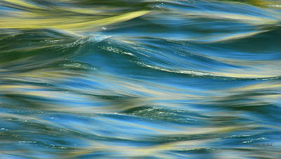 Sunlight Over The River Print by Donna Blackhall