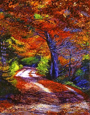 Sunlight Through The Trees Print by David Lloyd Glover