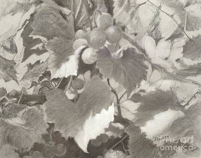 Sunlit Arbor Print by Mary Lynne Powers
