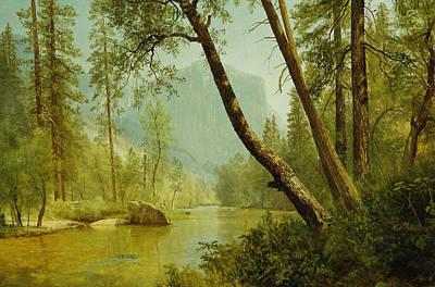 Yosemite National Park Painting - Sunlit Forest by Albert Bierstadt