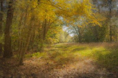 Mcentee Painting - Sunlit Meadow In Borderland by Bill McEntee