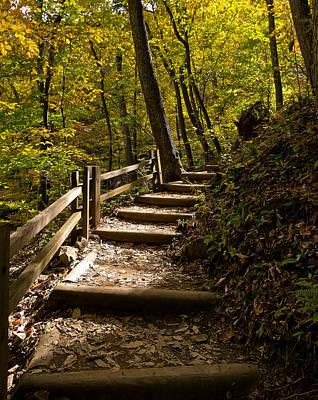 Autumn Foliage Photograph - Sunlit Trail by Lori Coleman