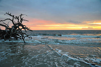 Beach Scenes Photograph - Sunrise At Driftwood Beach 1.3 by Bruce Gourley