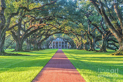 Landmarks Photograph - Sunrise At Oak Alley by Tod and Cynthia Grubbs