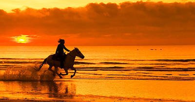 Photograph - Sunrise Gallop by Patty MacInnis