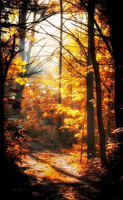Autumn Photograph - Sunrise Mist Through The Trees by Bob Orsillo