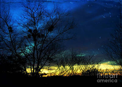 Sunrise On Another World Print by Renee Trenholm