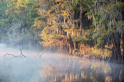 Photograph - Sunrise On Crystal River by Scott Pellegrin