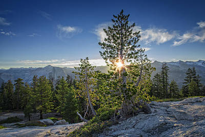Sunrise On Sentinel Dome Print by Rick Berk