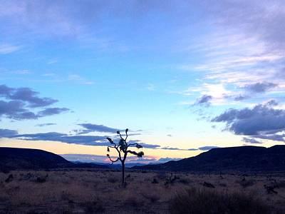 Pioneertown Photograph - Sunrise Over Joshua Tree by Nathalie Laurent-Marke