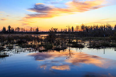 Wetlands Photograph - Sunrise Over Okefenokee Wetlands by Stefan Mazzola