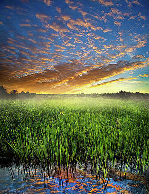 Environement Photograph - Sunrise Reflected by Phil Koch