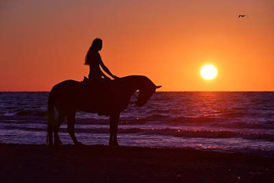 Gold Horse Photograph - Sunset by Artur Baboev