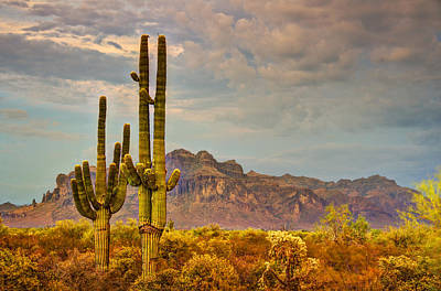 Sunset At The Superstitions  Print by Saija  Lehtonen