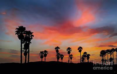 Christmas Photograph - Sunset Beach by David Millenheft