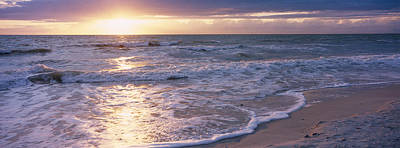 Sunset, Gulf Of Mexico, Florida, Usa Print by Panoramic Images