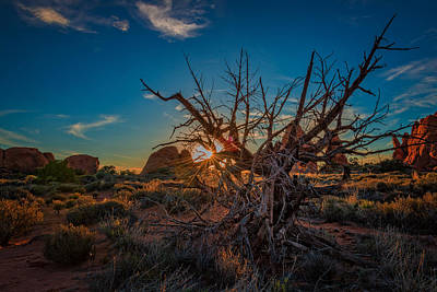 Megalith Photograph - Sunset In The Devil's Garden by Rick Berk