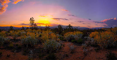 Photograph - Sunset by Jerome Obille