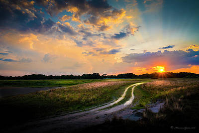 Spring Scenes Photograph - Sunset Lane by Marvin Spates