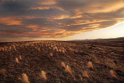 Fort Collins Photograph - Sunset On The Ridge by James Steele