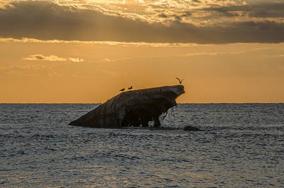 Seascape Photograph - Sunset On The Wreck Of The Concrete Ship Atlantus by Bill Cannon